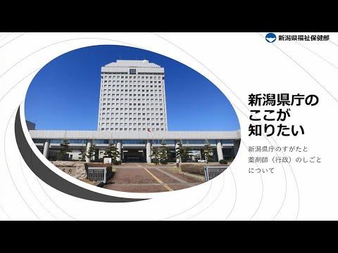 (薬剤師・行政)新潟県職員採用PR動画【組織を知る編】