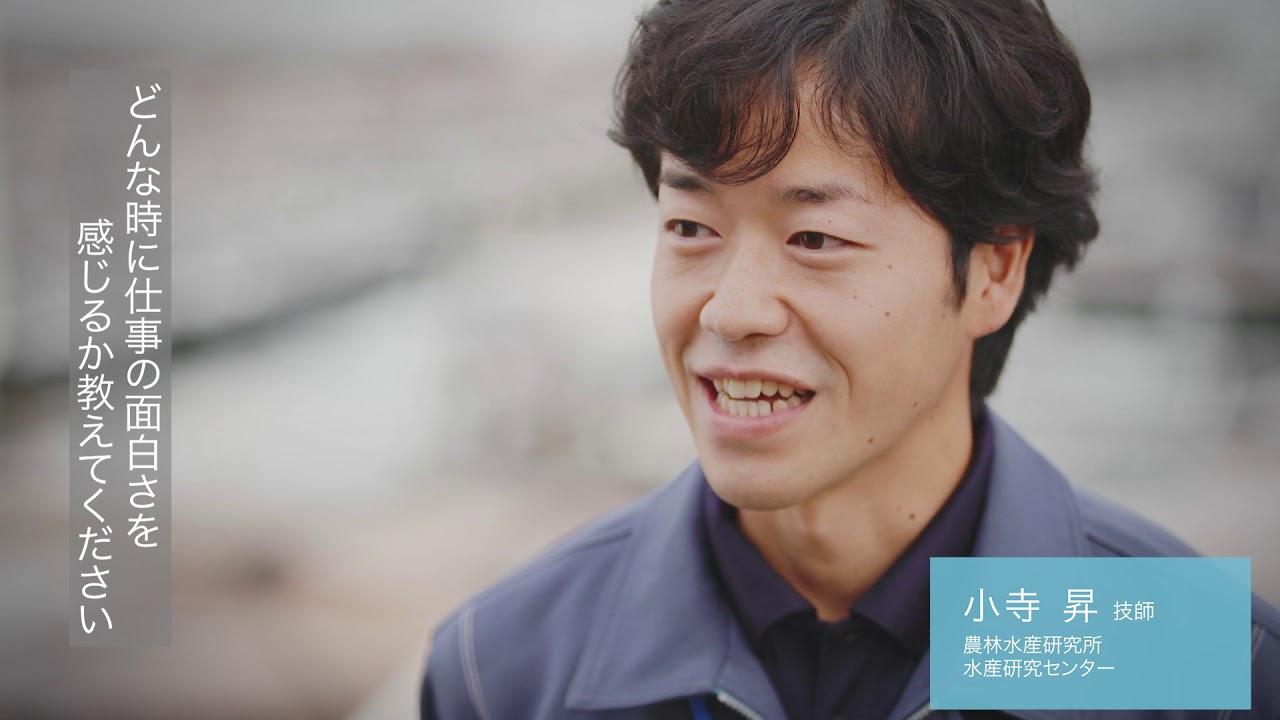 職種紹介「水産」-愛媛県職員採用動画「E顔に、なろう。」