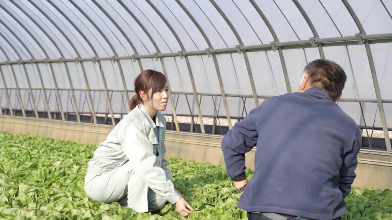 福岡県職員採用動画~仕事紹介・農業