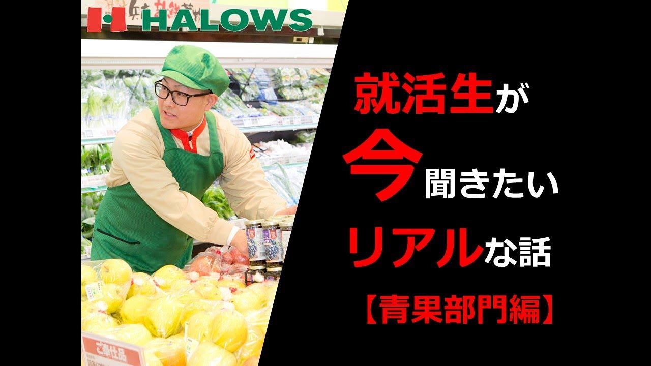 【採用動画】ハローズ part.6