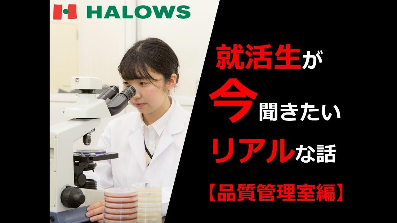 【採用動画】ハローズ part.3